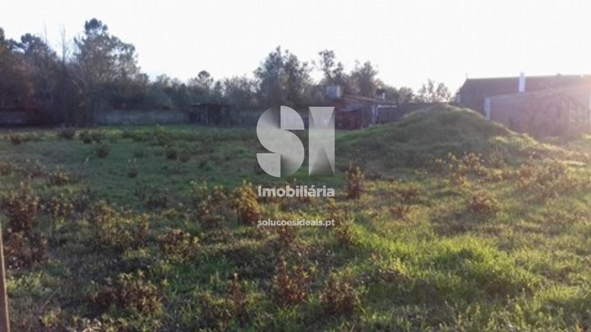 terreno para compra em lousa uniao das freguesias de lousa e vilarinho LSATR304