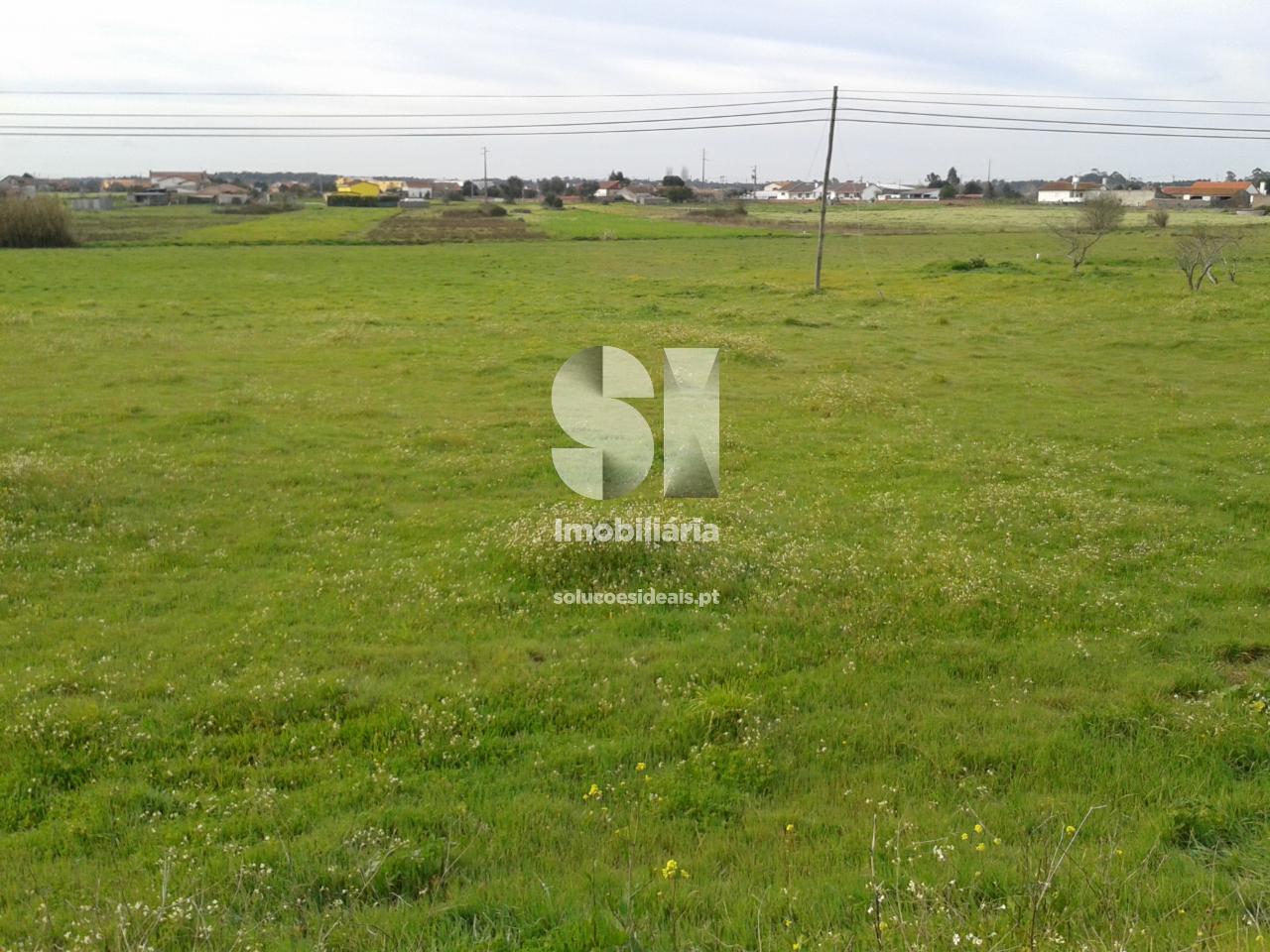 terreno para compra em leiria uniao das freguesias de monte real e carvide VPLPF262