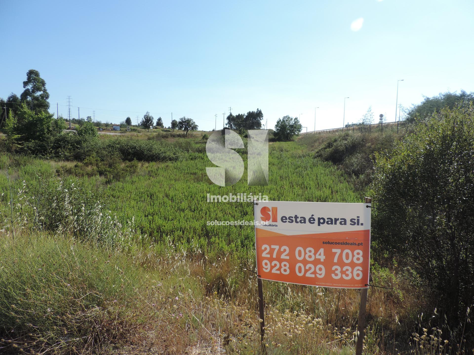 terreno para compra em castelo branco benquerencas CBZMJ158