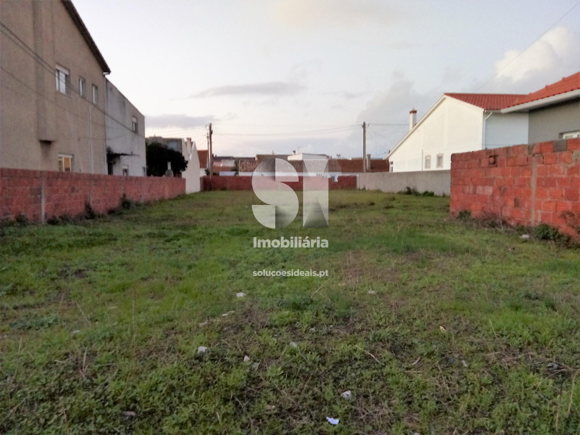 terreno para compra em marinha grande vieira de leiria vieira de leiria VPLSP275_1