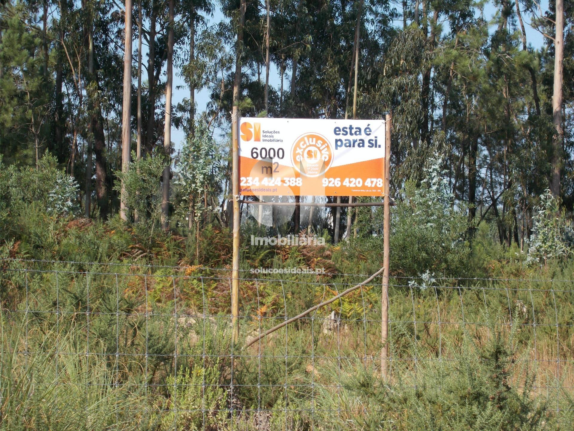 terreno para compra em ilhavo ilhavo sao salvador aveiro AVGDG1569