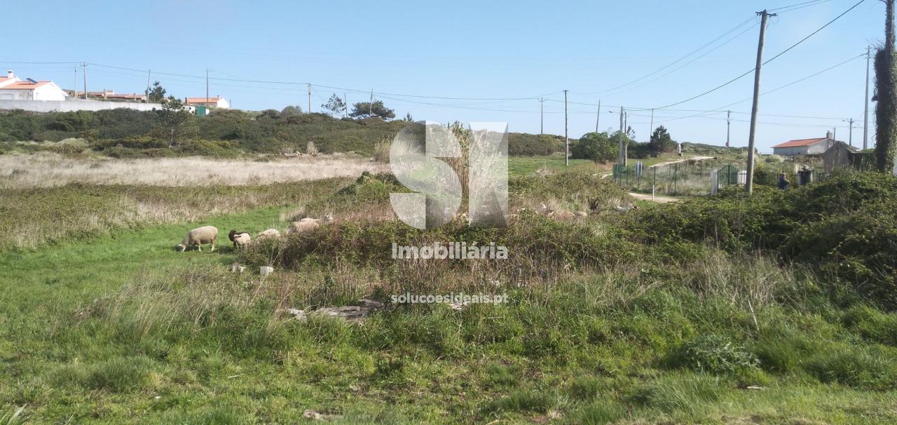 terreno para compra em alcobaca sao martinho do porto ACBLA209