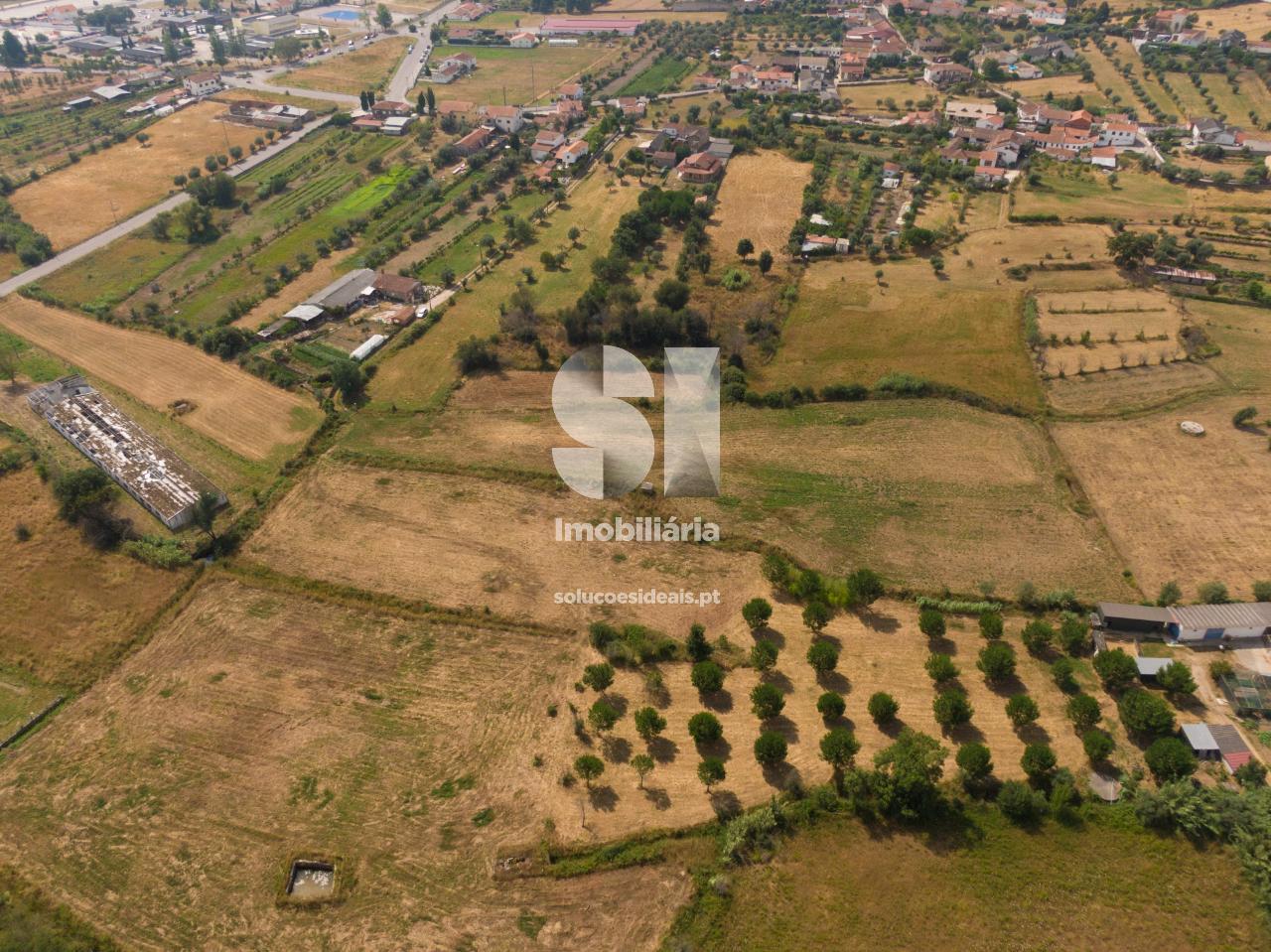 terreno para compra em vila nova de poiares poiares santo andre poiares LSANL438