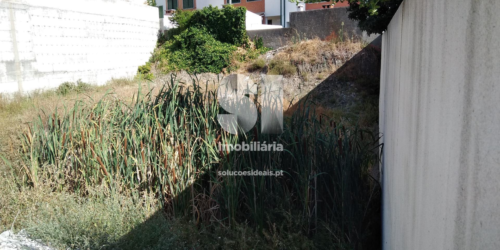 terreno para compra em castelo branco castelo branco castelo branco CBZFI277