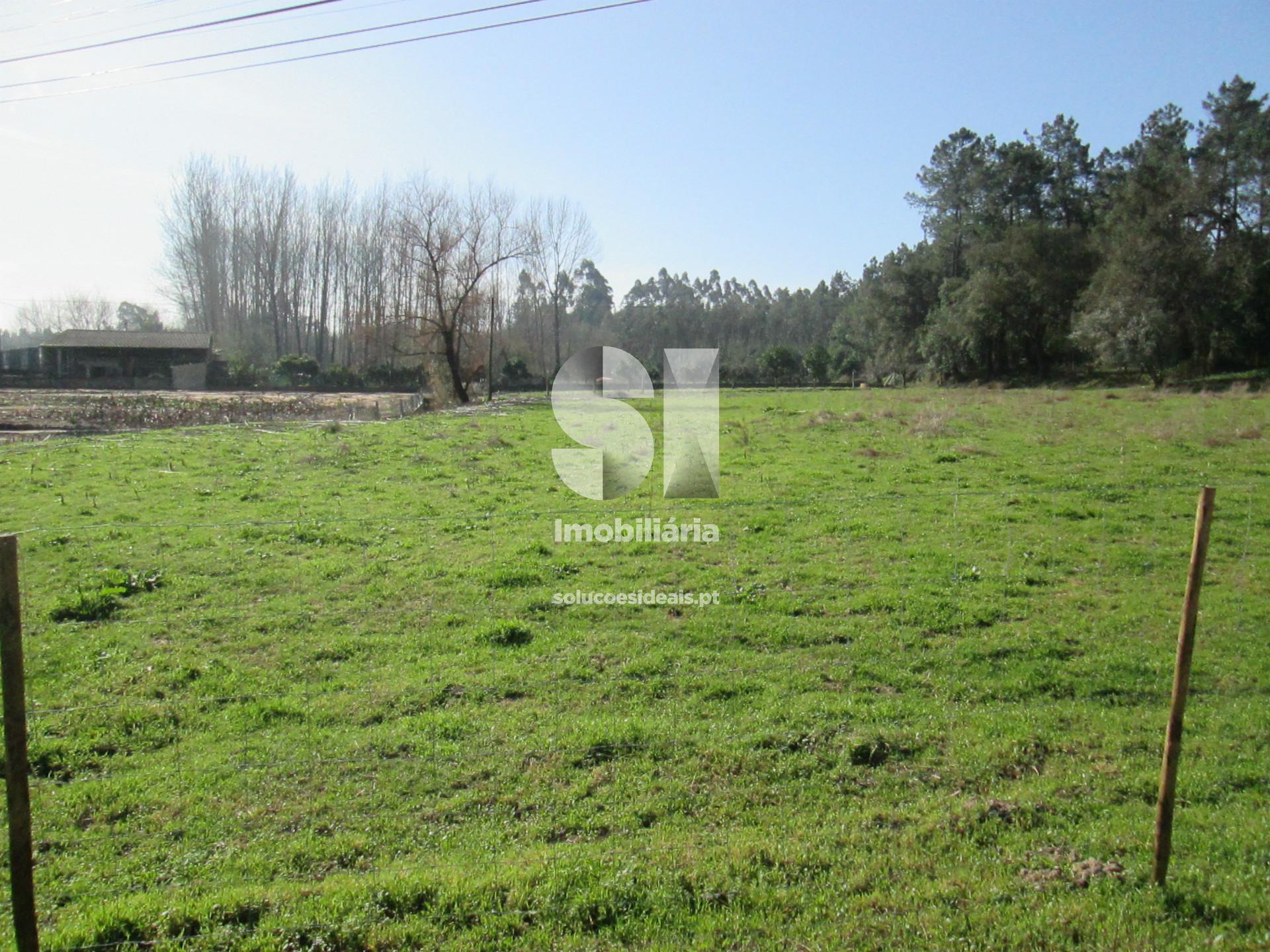 terreno para compra em anadia vilarinho do bairro MEAAM3013
