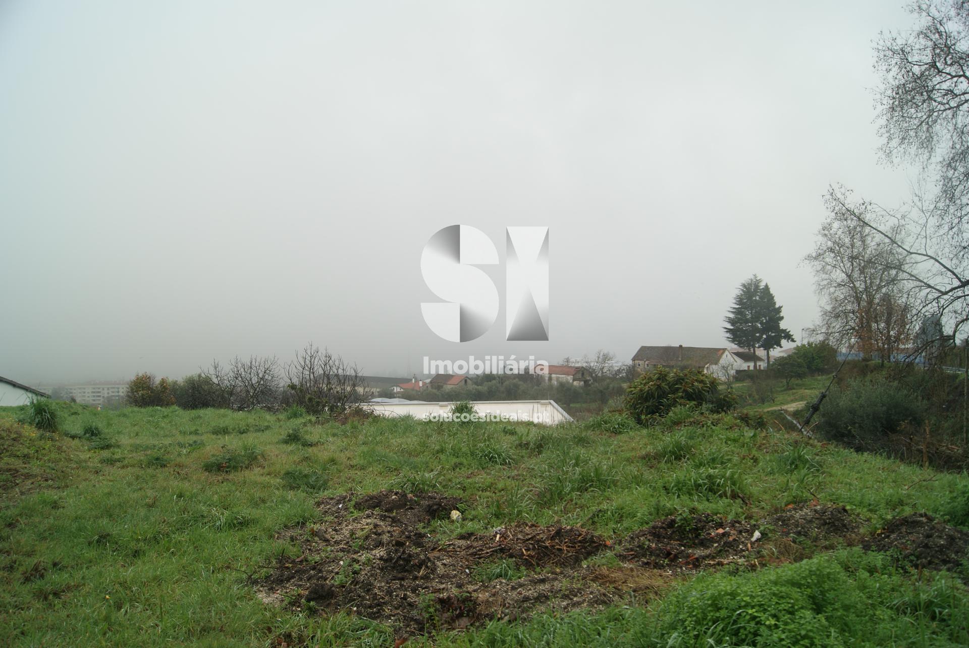 big_GRDLV315_1590080208903.jpg