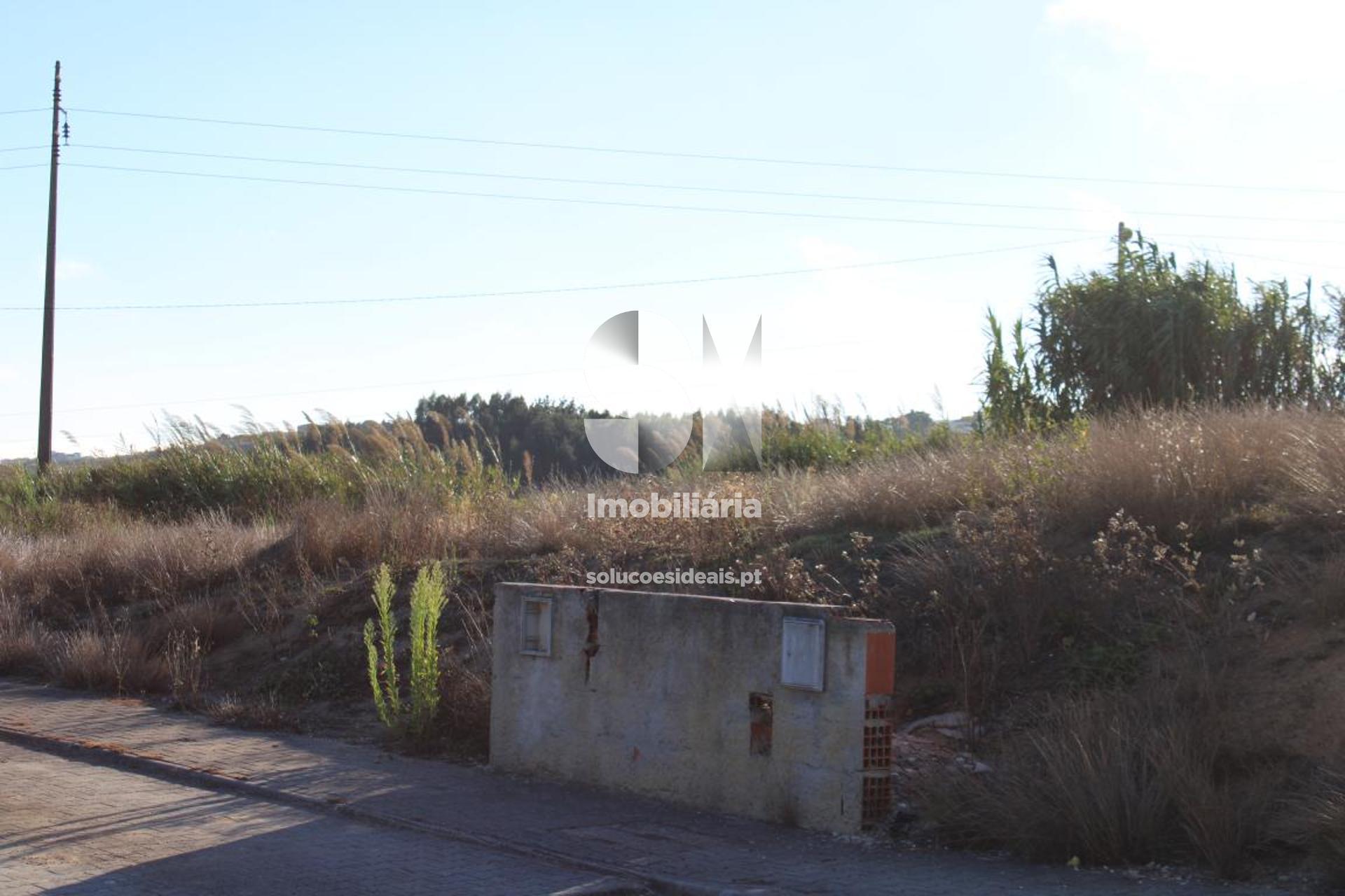 terreno para compra em lourinha uniao das freguesias de miragaia e marteleira LFCPM699_3