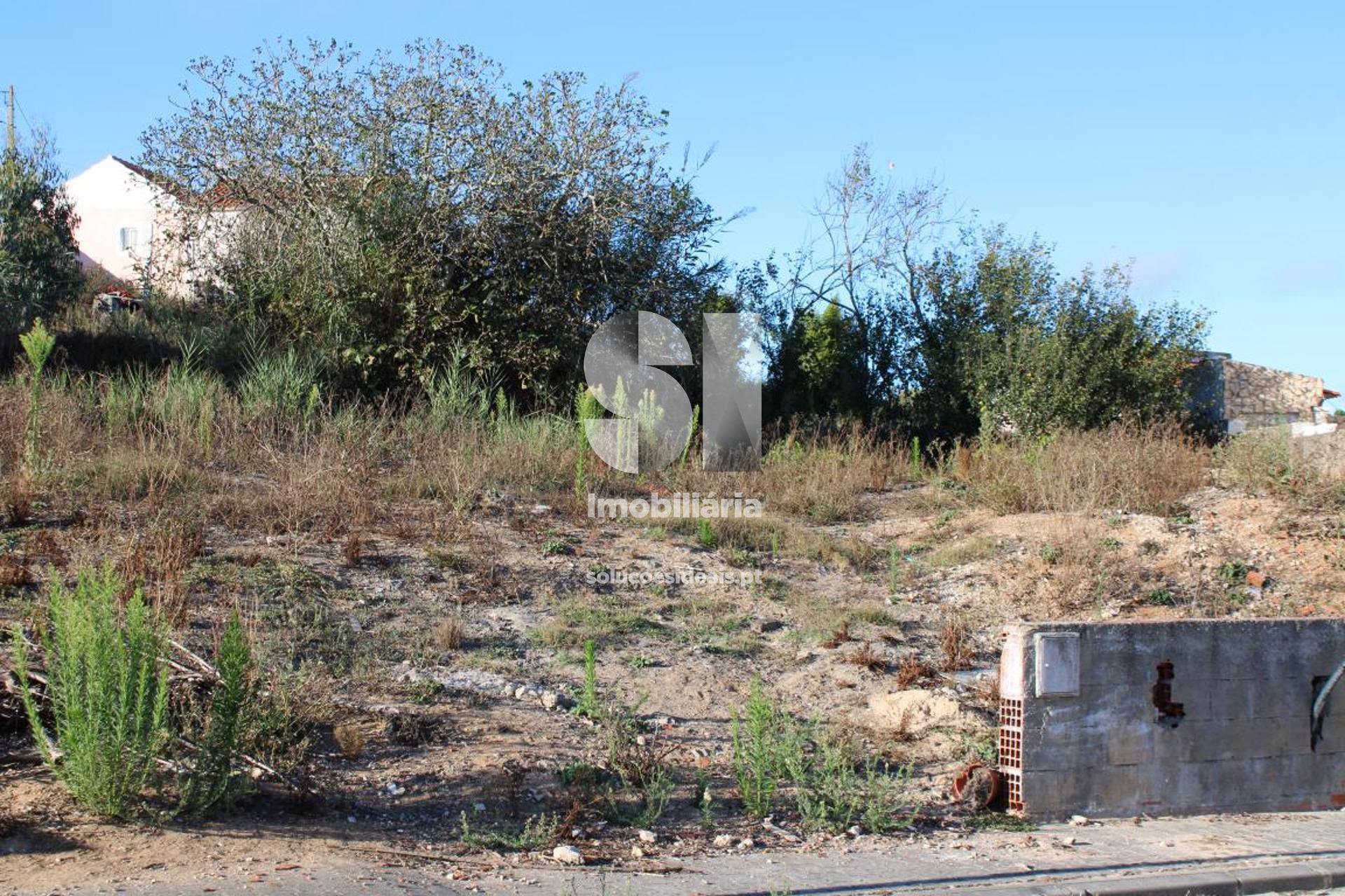 terreno para compra em lourinha uniao das freguesias de miragaia e marteleira LFCPM699_5