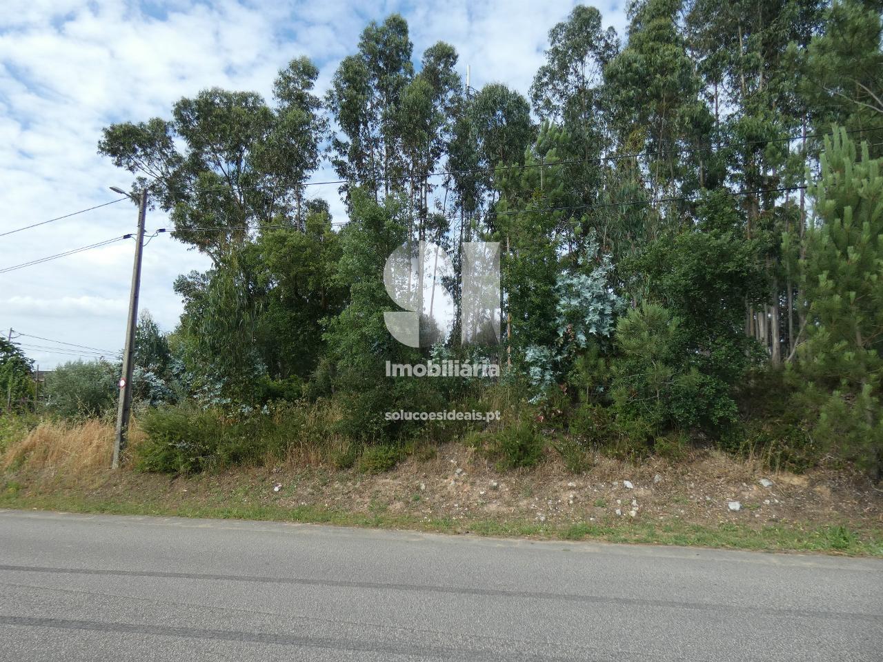 terreno para compra em mealhada uniao das freguesias da mealhada ventosa do bairro e antes MEATM3039