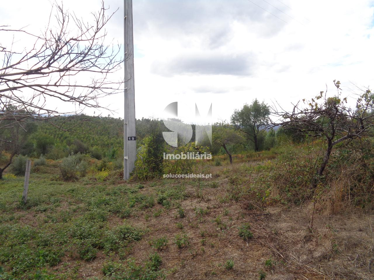 terreno para compra em vila nova de poiares poiares santo andre poiares LSAFS554_1