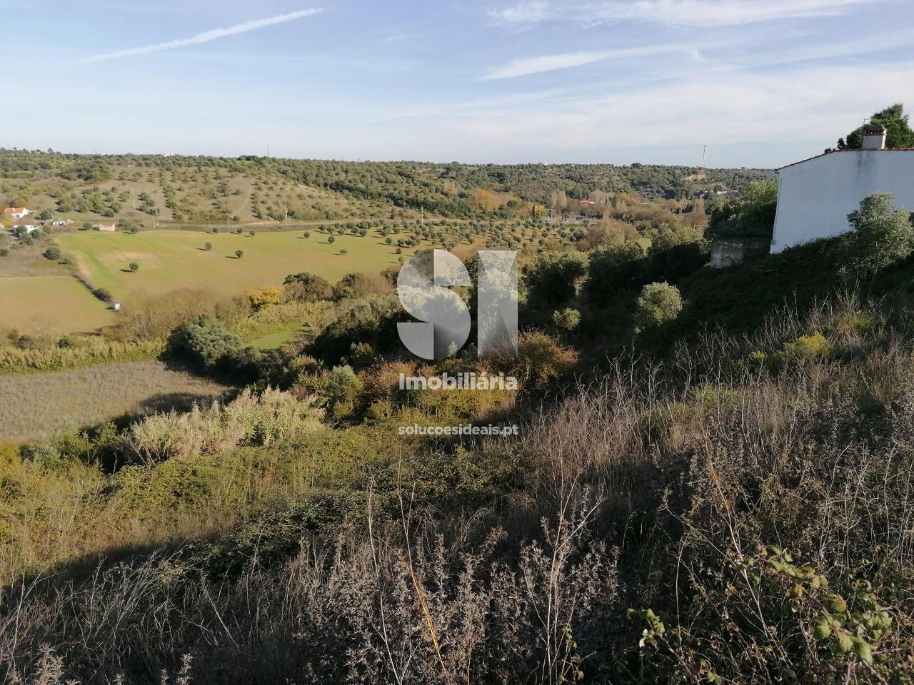 terreno t0 para compra em torres novas uniao das freguesias de torres novas sao pedro lapas e ribeira branca TNVPS4