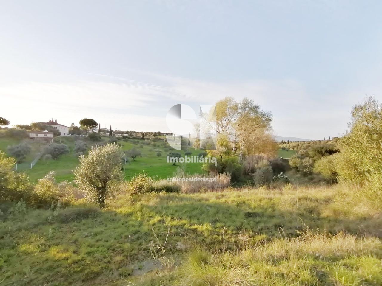 terreno t0 para compra em torres novas uniao das freguesias de torres novas santa maria salvador e santiago TNVAM42