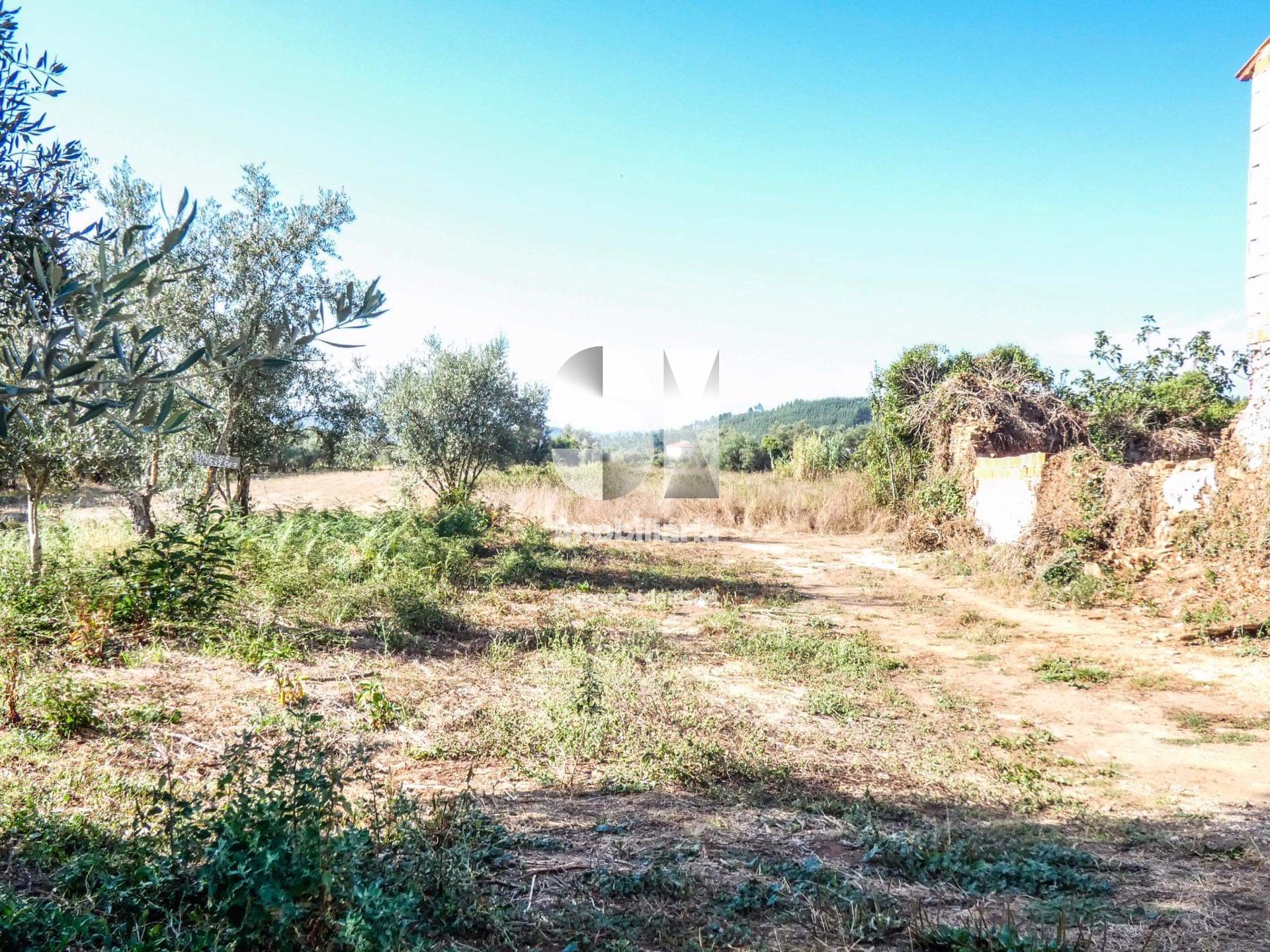 terreno para compra em lousa uniao das freguesias de lousa e vilarinho CPTLPR273