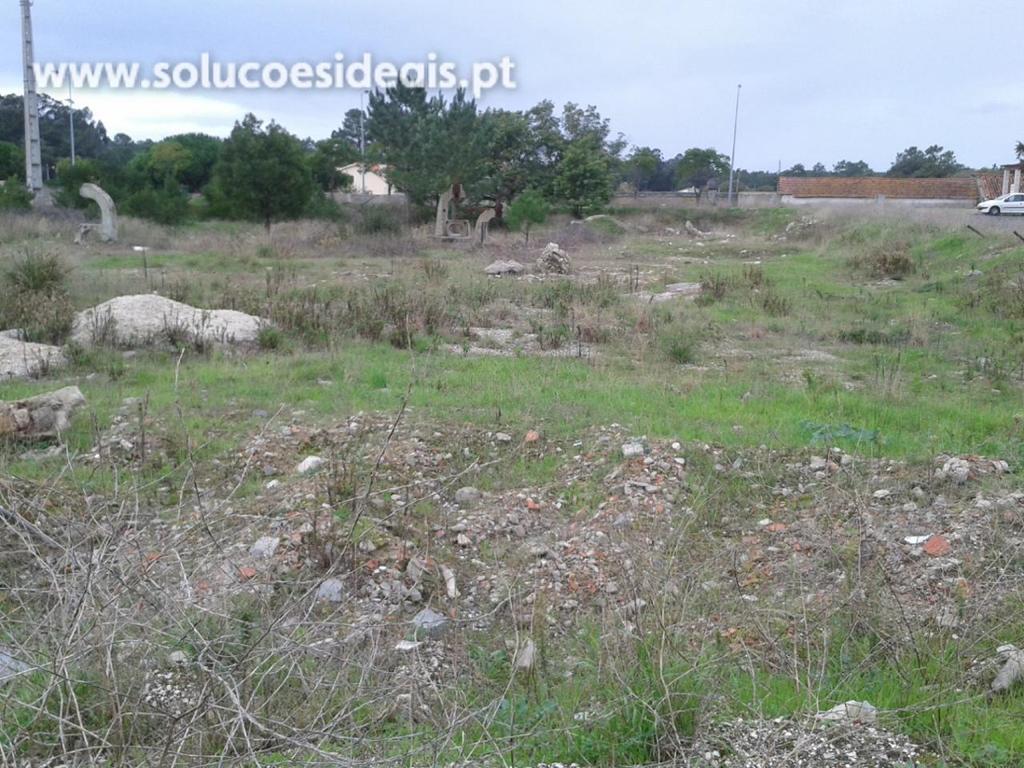 terreno para compra em marinha grande vieira de leiria vieira de leiria VPLPF88_2