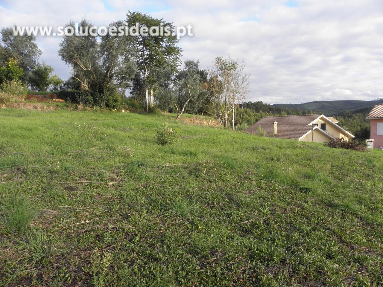 terreno para compra em vila nova de poiares poiares santo andre poiares LSAVC125